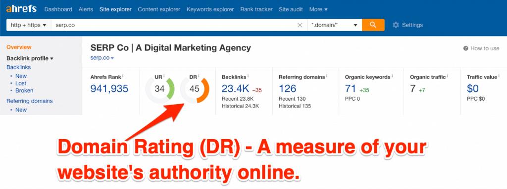 SEO-screenshot-for-domain-rating-1024x383